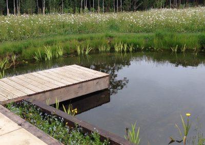 Wild garden design