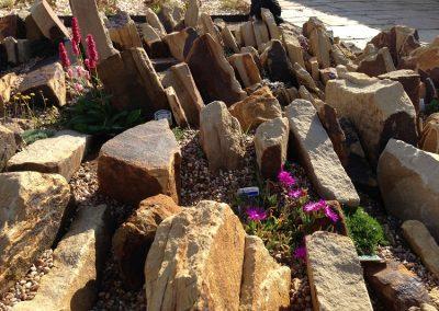 Sandstone rock garden