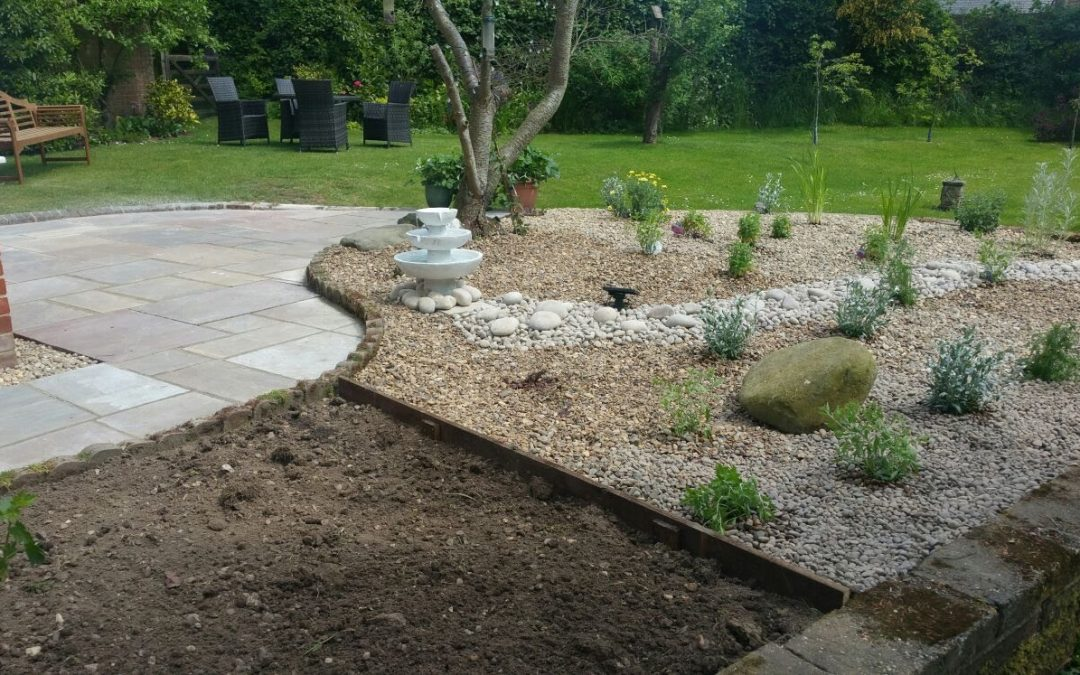 Low maintenance dry garden